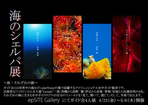 2010_4_3.jpg