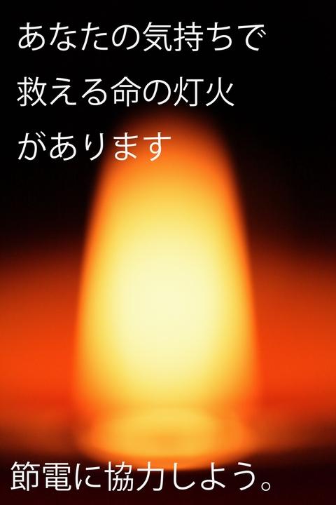 DPP_96317.jpg