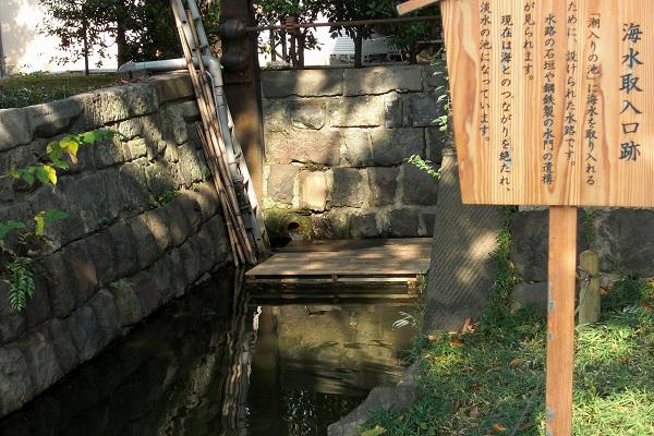 Shiba-rikyu6