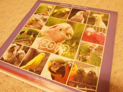 2010 365days鳥どりカレンダー