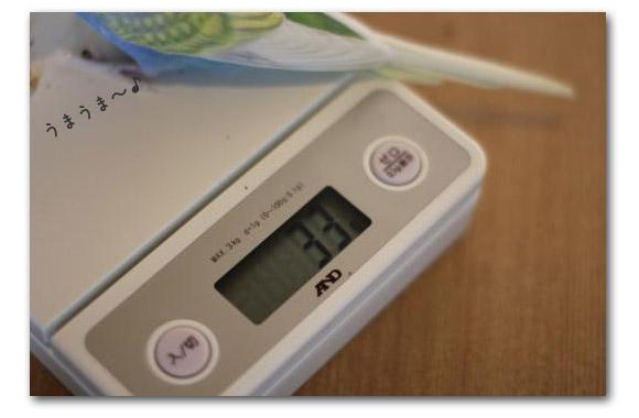 ○○の秋 ピーちゃん体重計2