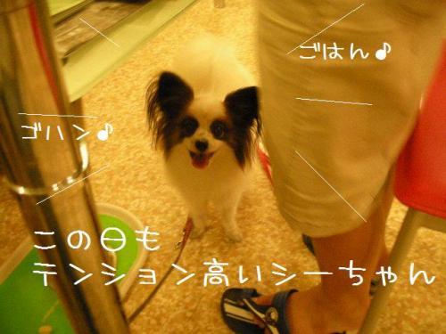 2009_0828_185919-DSCN6344.jpg