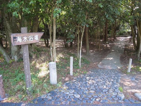 2009/08/31須ノ川公園海水浴林の入口