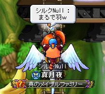 羽が・・・