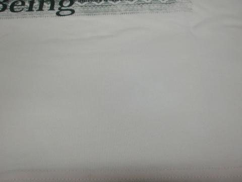 ピンクTシャツ20111006後2