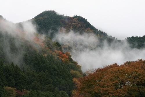 mitake-aki_298.jpg