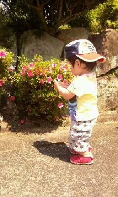 moblog_d34345ab.jpg