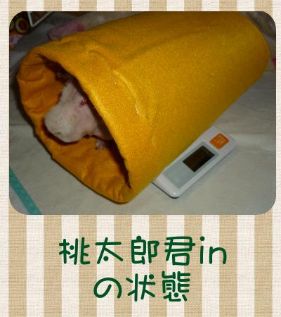 体重2011.10.2