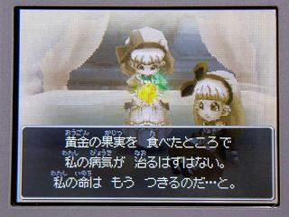 ドラクエ9-088★