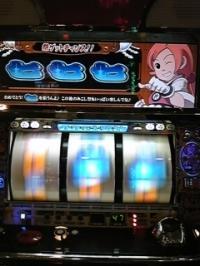 gDVC00329.jpg