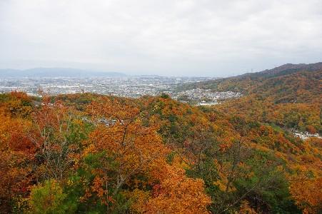 091129 京都高槻方面を望む