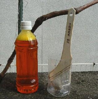 20100220石灰硫黄合剤