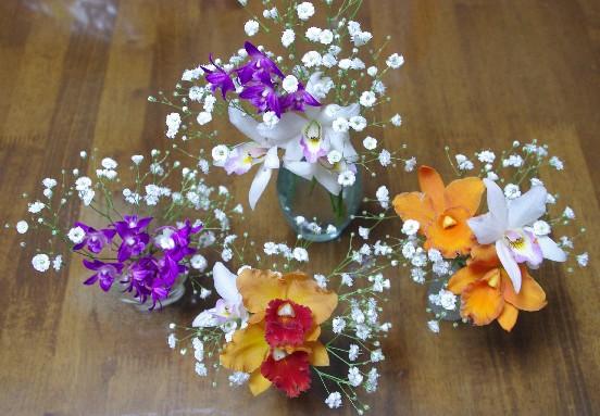 100328ミニカトレア花瓶