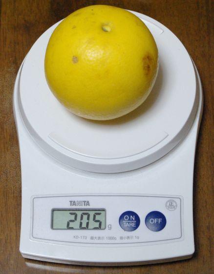 110326 グレープフルーツ計量