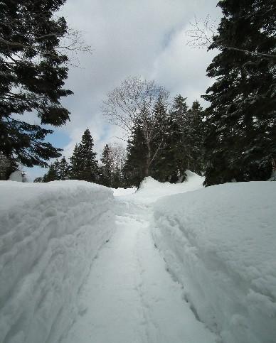 110424-雪の壁