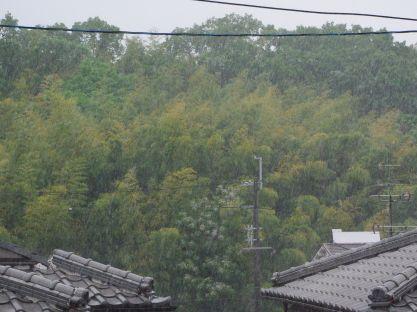 110522-雨