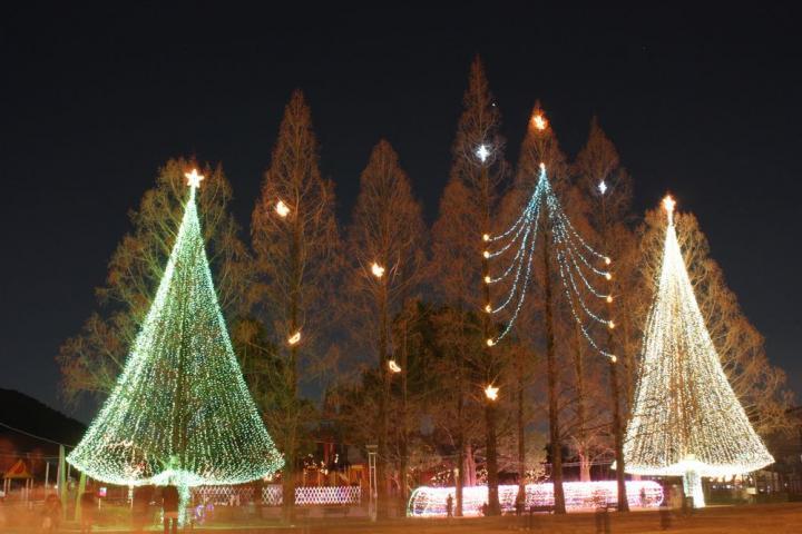 長良公園 2