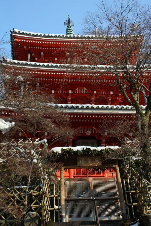 雪の岐阜公園8