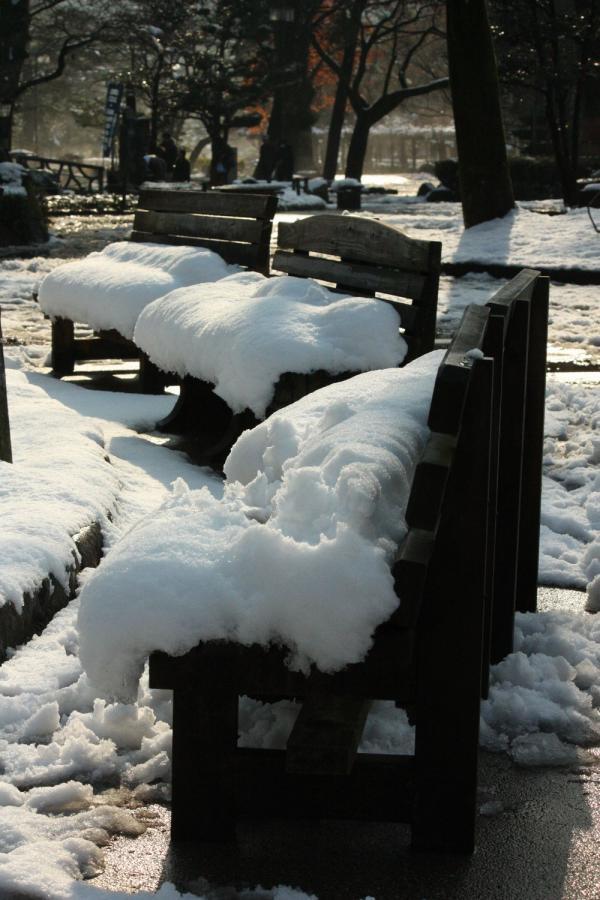 雪の岐阜公園6