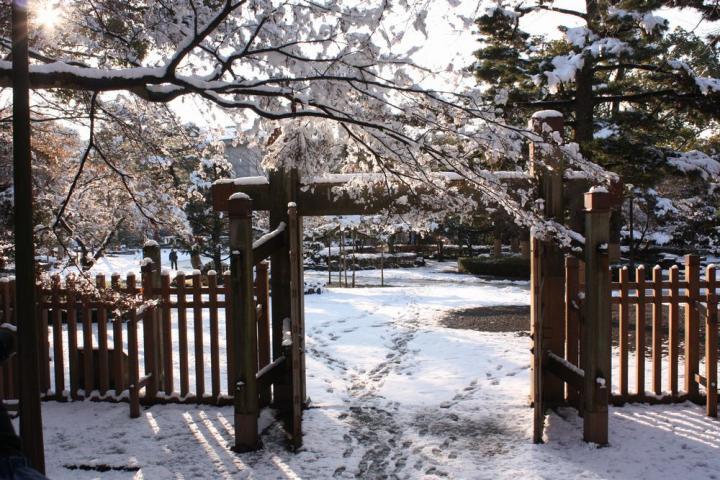 岐阜公園 雪5