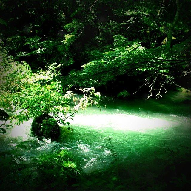レトロカメラ 奥入瀬渓流