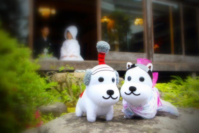 翠明荘 結婚式 弘前 前撮り ロケーション 写真 撮影