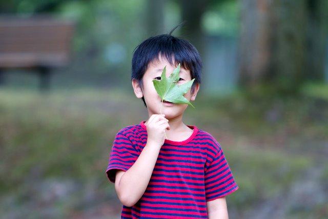 子ども 写真 スナップ 撮影 ロケ 弘前 マタニティフォト