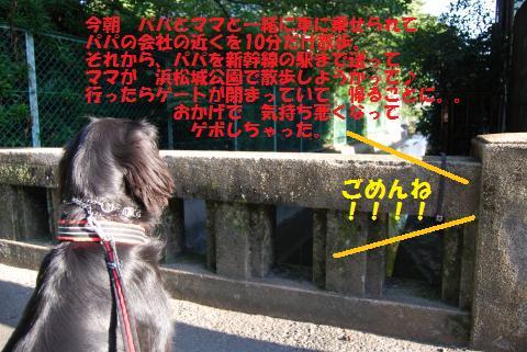 001_convert_20090828125435.jpg