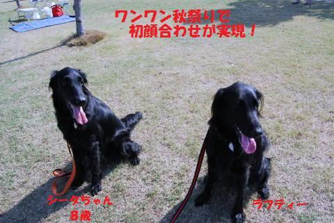 002_convert_20091004131300.jpg
