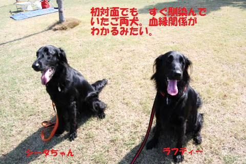 003_convert_20091004155721.jpg