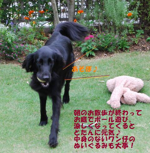 007_convert_20090920075307.jpg