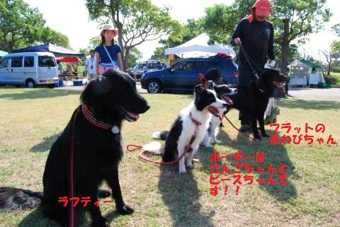 007_convert_20091004180216.jpg