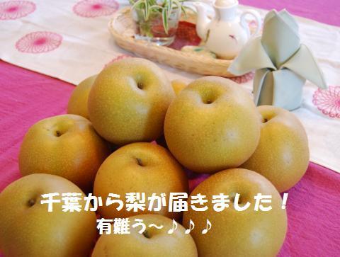 008_convert_20090824190459.jpg
