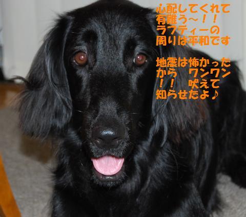 011_convert_20090812143955.jpg