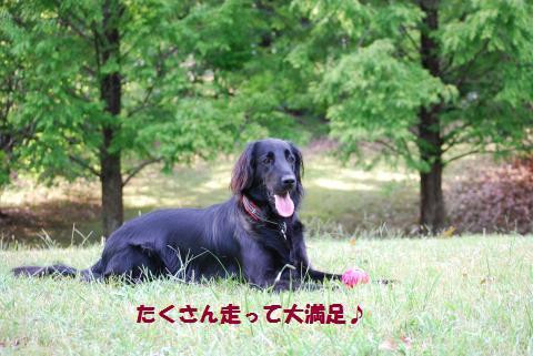 011_convert_20091001215425.jpg