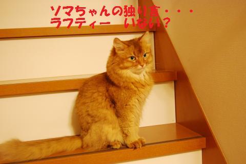 015_convert_20090909212550.jpg