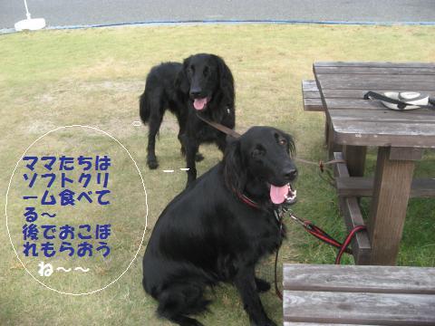 023_convert_20090911085525.jpg