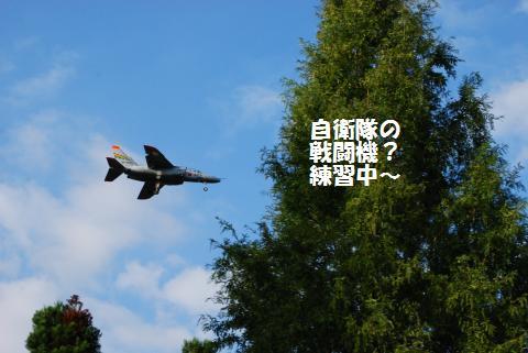 036_convert_20091001221646.jpg