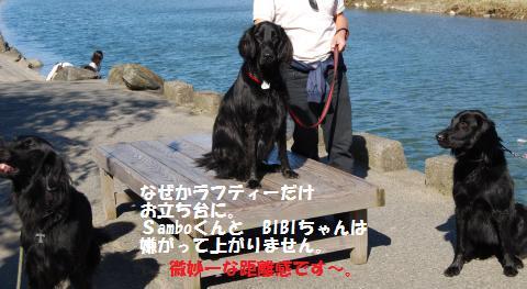040_convert_20091012200258.jpg