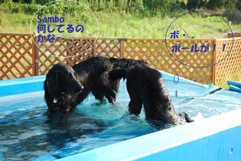 046_convert_20090805080039.jpg