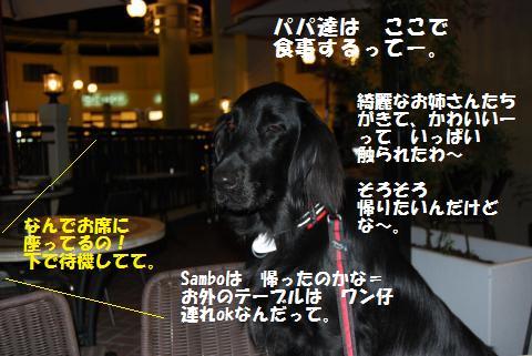 059_convert_20091012200808.jpg