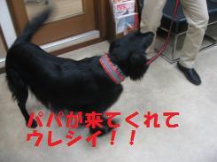 075_convert_20090924194045.jpg