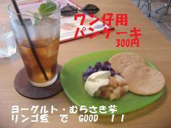 094_convert_20090925141531.jpg