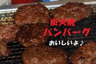 153_convert_20090915111610.jpg