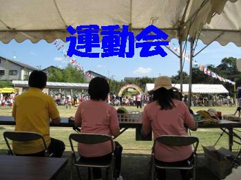 11_20091015212838.jpg