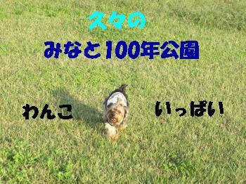 1_20091015212608.jpg
