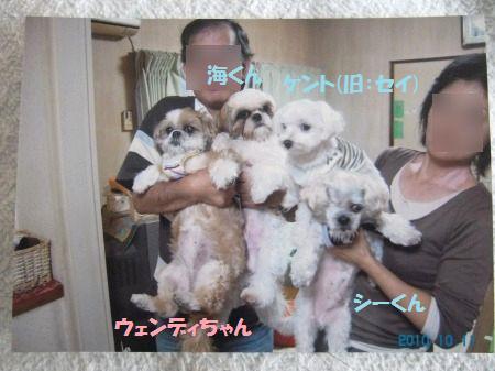 2011_0112_4_1.jpg