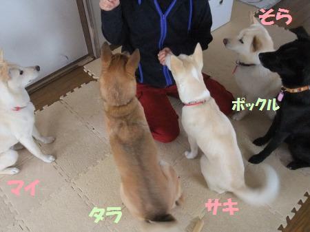 2011_0219_2.jpg