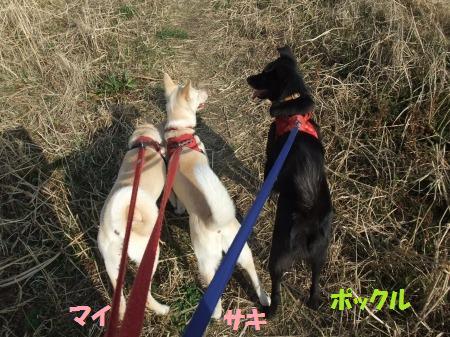 2011_0227_1.jpg