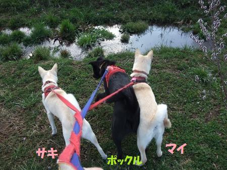2011_0227_7.jpg